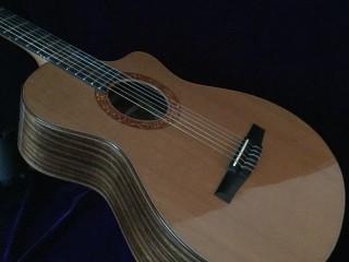 Taylor Jason Mraz Nylon-string Acoustic